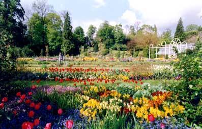 "Jardin des Plantes ""The Botanic Gardens"" (Protected park) - Caen"