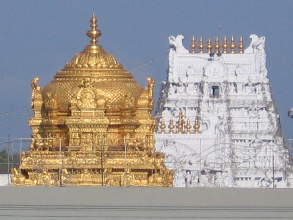 tdp-high-court-tirumala