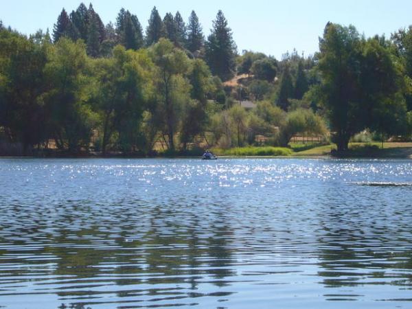Auburn lake trails big pond and playground fishing area for Lake clementine fishing