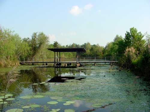 Sheldon lake state park for Sheldon lake fishing