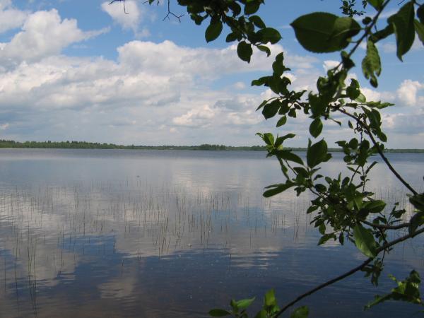 Рыбалка на озерах мошенского района