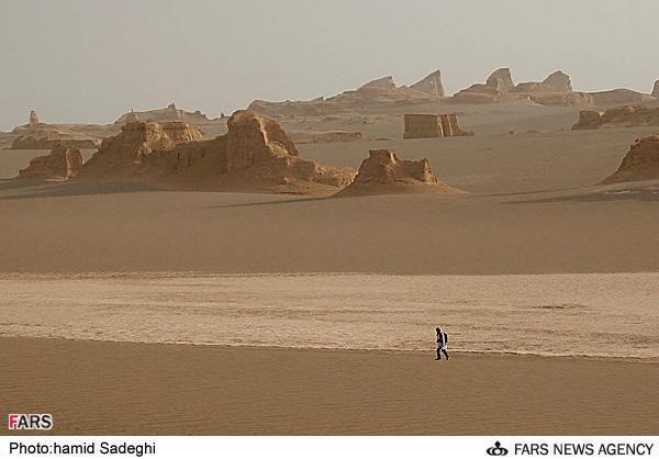 ルート砂漠の画像 p1_32