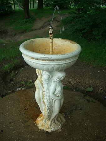 Своими руками питьевой фонтанчик