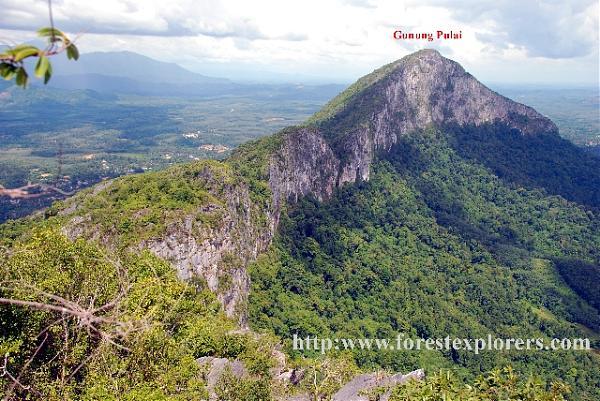 Image result for gunung pulai