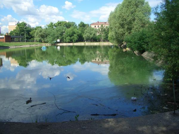 озеро с рыбалкой в реутове