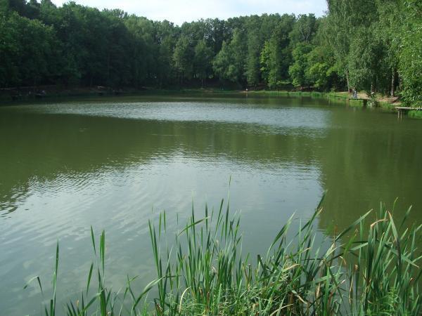 Рыбалка пруд в узком