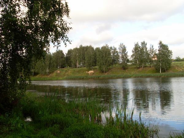 рыбалка на черной речке железнодорожный