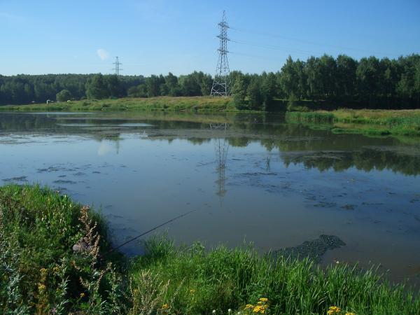 Битцевский пруд - фото 1