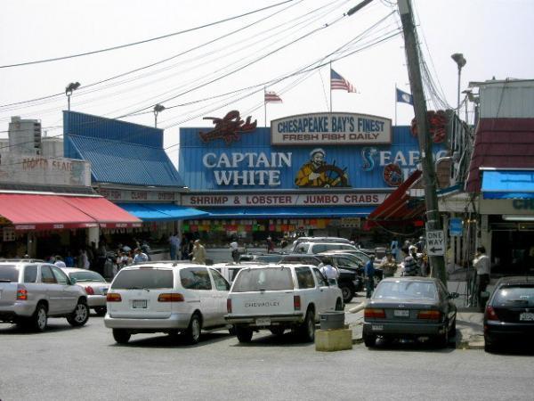 Maine avenue fish market washington d c for Waterfront dc fish market