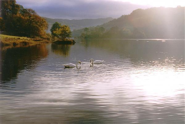 Lake Yamanaka   nature conservation park / area ...