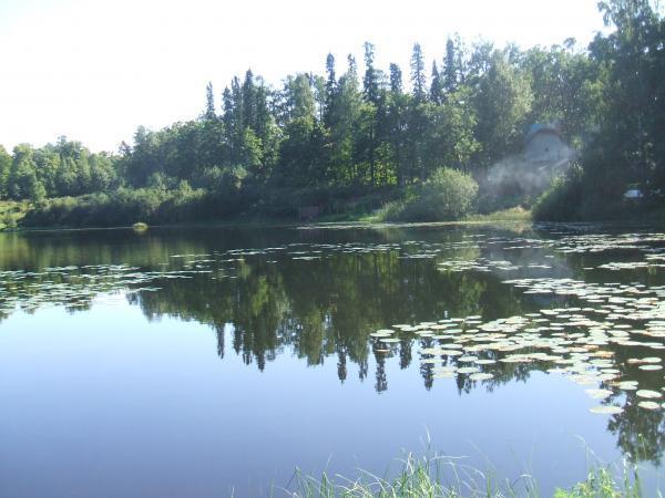 озеро глухое осиновая роща рыбалка