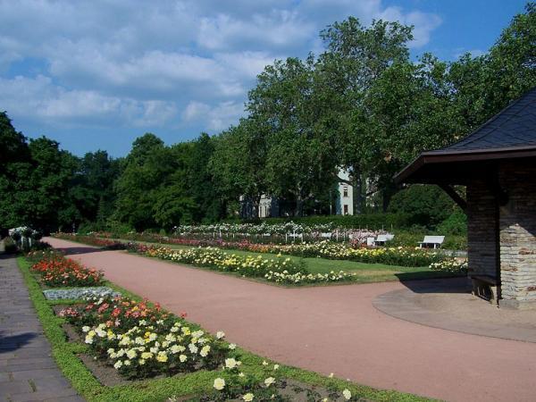 Jardim das Rosas  Dresden