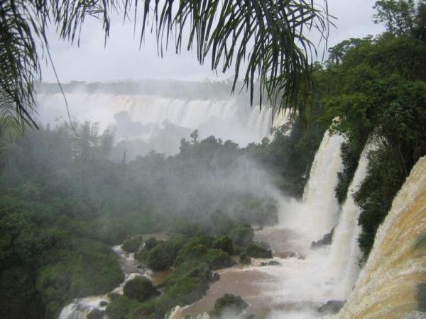 イグアス国立公園 (アルゼンチン)の画像 p1_21