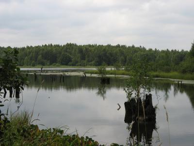 рыбалка аксеново