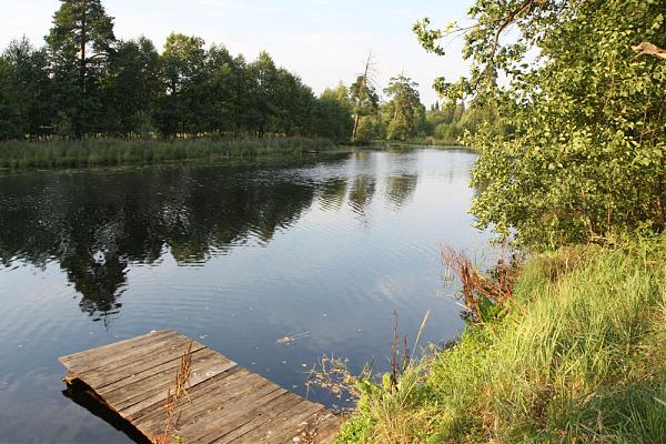 рыбалка на реке лух фролищи
