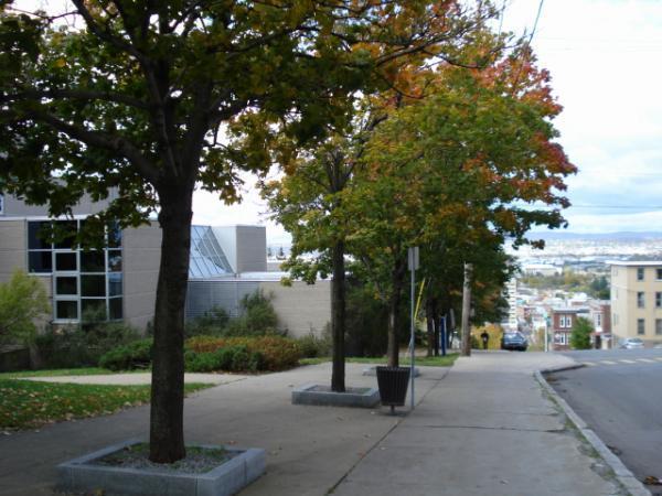 Centre communautaire lucien borne qu bec for Centre lucien borne piscine