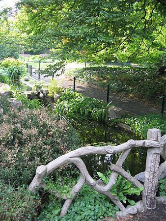 jardin des plantes - Jardin Des Plantes Caen