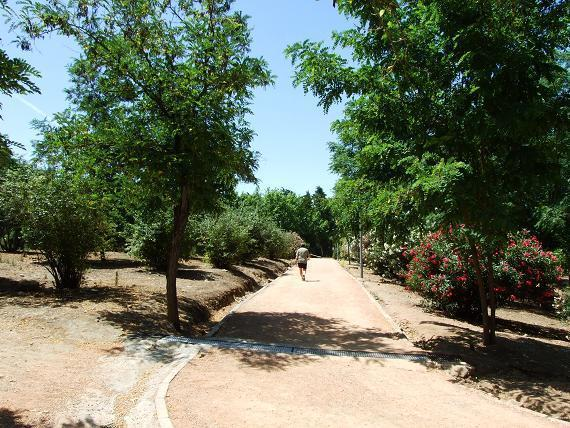Circuito Parque Cruz Conde Cordoba : Parque cruz conde córdoba