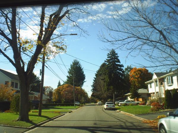 Syosset (NY) United States  city photos : Syosset, New York