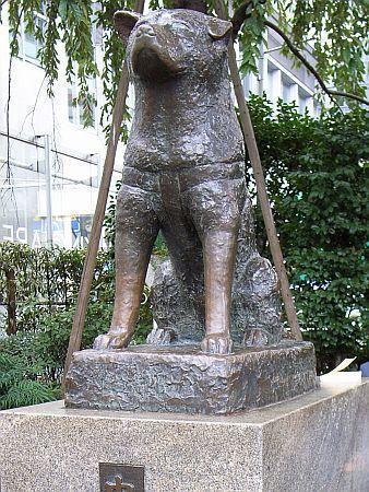 Памятник хатико