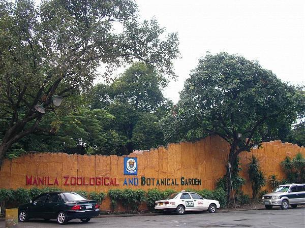 manila zoological botanical garden an The manila zoological and botanical garden is home to many plant collections, from the botanically rich and diverse 2018 manila zoo wikipedia2017.