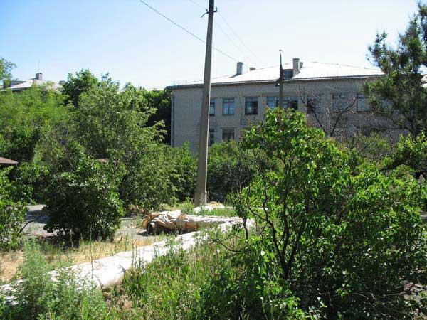 Городская больница 40 сестрорецк реконструкция