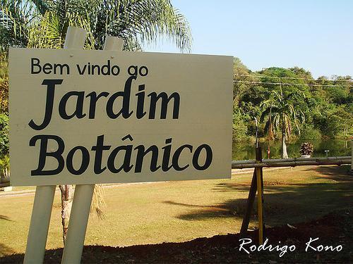 ipe de jardim botânico:Jardim Botânico Amália Hermano Teixeira – Goiânia