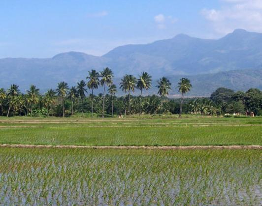 Theni India  City new picture : theni is a business center in western tamil nadu of southern india it ...