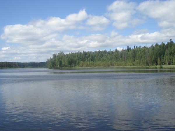 теплая одежда щучье озеро комарово рыбалка нас собственное производство