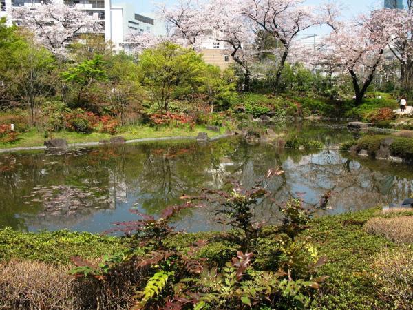 Mori garden tokyo for Garden pool tokyo