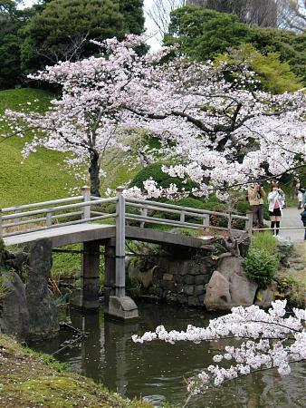 Jardin koishikawa korakuen tokyo for Jardin korakuen