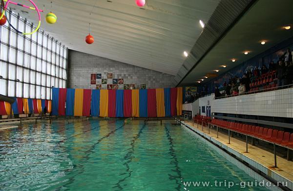 спартак бассейн новосибирск официальный сайт