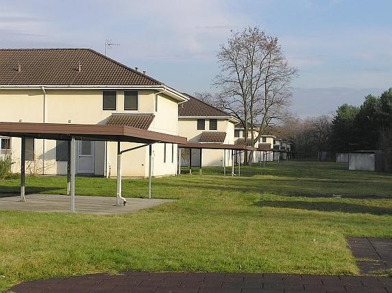 Singles griesheim