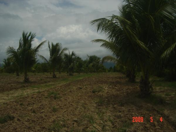 Aborlan Philippines  city pictures gallery : ... philippines southern tagalog aborlan world philippines palawan aborlan