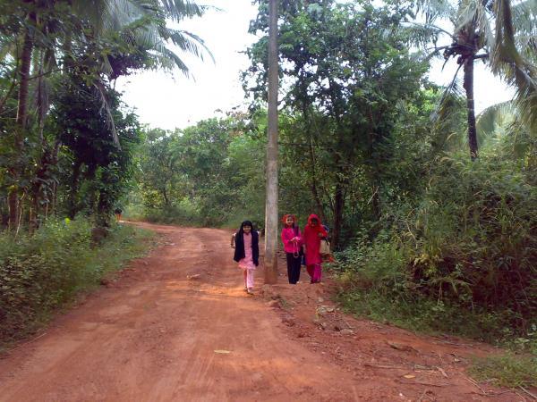Malappuram India  City new picture : ... pulliparamba Chelembra, Malappuram, Kerala, India. Pulliparamb