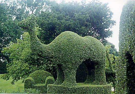 Green Animals Topiary Garden Portsmouth Rhode Island