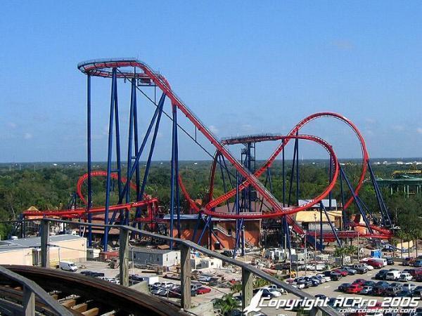 Sheikra tampa florida - Roller coasters at busch gardens ...