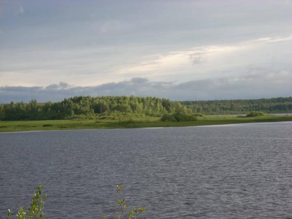 дубровское водохранилище. рыбалка