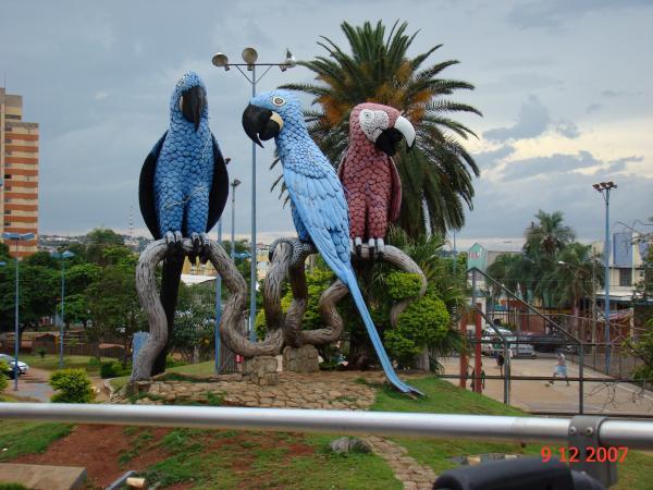 ... Sul   Campo Grande. Praça das Araras b8f5b21fe4386