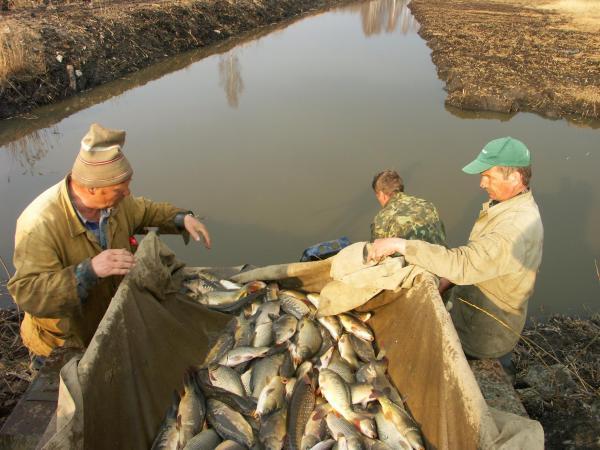 рыболовные базы в беларуси
