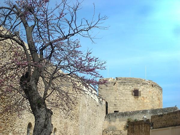 Luogo interessante , centro storico (98)