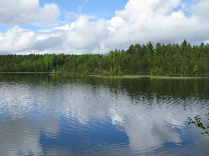 озеро миндюкинское рыбалка