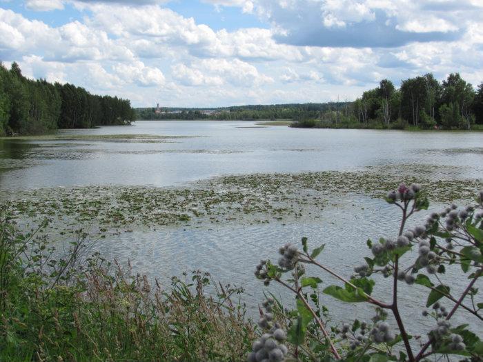 Pääjärvi Lammi