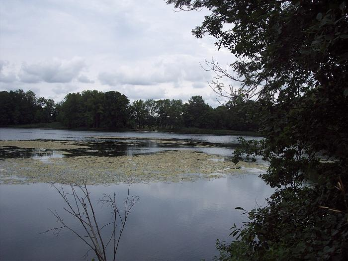 рыбалка в ропше на прудах