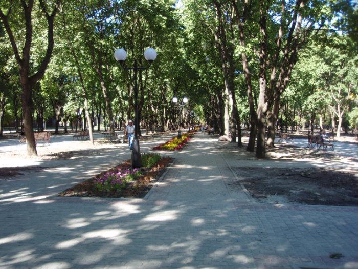 Детская поликлиника 106 красносельского района официальный сайт