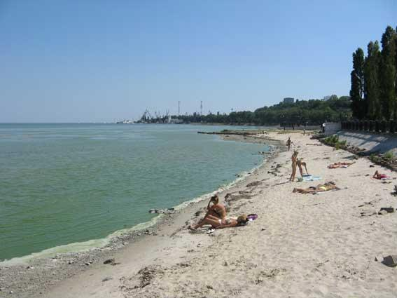 Таганрогский залив wikimapia — опишем
