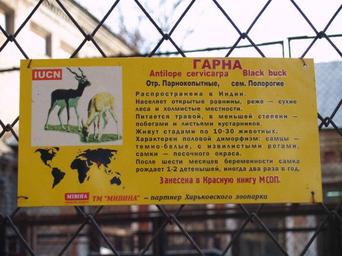 Зоопарк зоопитомник животные