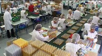 Dream Plast India Pvt Ltd Plant 2 Chakan
