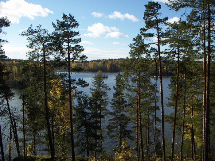 озеро большое заветное. ленинградская область рыбалка