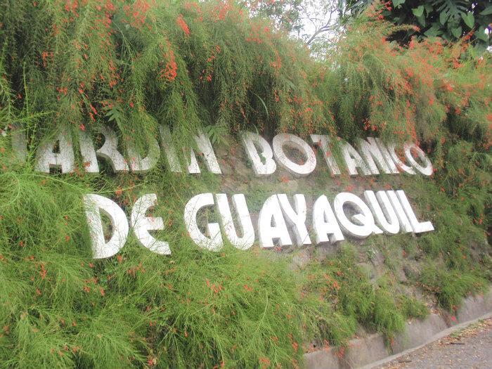 Jardin botanico de guayaquil guayaquil for Caracteristicas de un jardin botanico